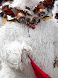 Bear Costume, Oruro Carnival Procession Parade, Oruro, Bolivia, South America Photographic Print by Phil Clarke-Hill