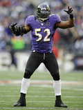NFL Playoffs 2013: Colts vs Ravens - Ray Lewis Photo by Nick Wass