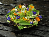 Organic Salad with Edible Flowers, Philippines, Southeast Asia, Asia Photographic Print by Luca Tettoni