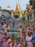 Young Nun Novices in Front of the Eastern Entrance to Shwedagon, Yangon, Myanmar (Burma), Asia Photographic Print by Eitan Simanor