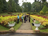 Visitors in the Royal Botanical Garden, Peradeniya, Kandy, Sri Lanka, Asia Photographic Print by Peter Barritt