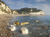 White Cliffs at Beer, on the Jurassic Coast, UNESCO World Heritage Site, South Devon, England, UK Fotografie-Druck von Adam Burton