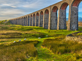 Pen-y-ghent and Ribblehead Viaduct, Yorkshire Dales Nat'l Park, North Yorkshire, England Photographic Print by Alan Copson