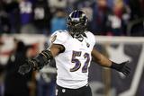 NFL Playoffs 2013: Patriots vs Ravens - Ray Lewis Fotografisk trykk av Stephan Savoia