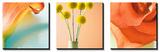 Tropical Flowers Triptych Plakát