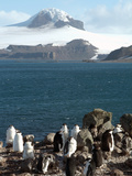 Aitcho Island, Antarctica, Polar Regions Photographic Print by Ethel Davies