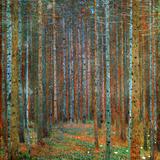 Gustav Klimt - Jedlový les, 1902 Obrazy