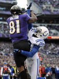 NFL Playoffs 2013: Colts vs Ravens - Anquan Boldin Photo by Nick Wass