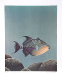 Trigger Fish Limited Edition by Richard Ellis