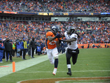 NFL Playoffs 2013: Ravens vs Broncos - Knowshon Moreno Photographic Print by Jack Dempsey