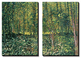 Bois et sous-bois|Woods and Undergrowth, vers 1887 Affiche par Vincent van Gogh