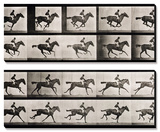 "Jockey on a Galloping Horse, Plate 627 from ""Animal Locomotion,"" 1887 Print by Eadweard Muybridge"