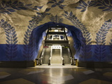 Artwork in Kungstradgarden Subway Station, Stockholm, Sweden, Scandinavia, Europe Photographic Print by Ian Egner