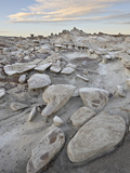 Rocks in the Badlands at Sunrise, Bisti Wilderness, New Mexico, USA, North America Photographic Print by James Hager