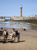 Donkeys on Whitby Sands, Whitby, North Yorkshire, Yorkshire, England, United Kingdom, Europe Photographic Print by Mark Sunderland