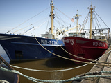 Fishing Fleet, Wexford, Leinster, Republic of Ireland, Europe Photographic Print by Matthew Frost