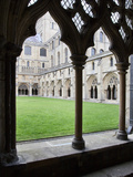 Norwich Cathedral Cloisters, Norwich, Norfolk, England, United Kingdom, Europe Photographic Print by Mark Sunderland