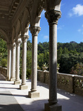 Monserrate Palace, Sintra, Portugal, Europe Photographic Print by Jeremy Lightfoot
