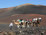 Dromedary Ride on Timanfaya Mountain, Timanfaya Nat'l Park, Lanzarote, Canary Islands, Spain Photographic Print by Stuart Black