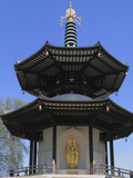 Peace Pagoda, Battersea Park, London, England, United Kingdom, Europe Photographic Print by Rolf Richardson