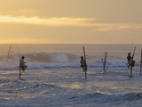 Stilt Fishermen at Weligama, South Coast, Sri Lanka, Asia Photographic Print by Peter Barritt