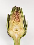 Half Artichoke, Italy, Europe Photographic Print by Nico Tondini
