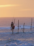 Stilt Fisherman at Weligama, South Coast, Sri Lanka, Asia Photographic Print by Peter Barritt