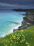 Mother Ivey's Bay, Padstow, Cornwall, England, United Kingdom, Europe Photographic Print by Jeremy Lightfoot