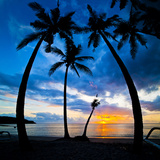 Silhouette of Palm Trees at Sunset, Nippah Beach, Lombok, Indonesia, Southeast Asia, Asia Photographic Print by Matthew Williams-Ellis