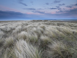 Twilight on the Dunes at Holme Nature Reserve, Norfolk, England Lámina fotográfica por Jon Gibbs