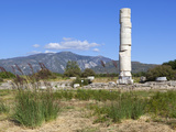 Ireon Archaeological Site with Column of the Temple of Hera, Ireon, Samos, Aegean Islands, Greece Photographic Print by Stuart Black