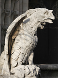 Gargoyle, Notre Dame Cathedral, Paris, France, Europe Photographic Print by  Godong