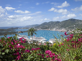 Charlotte Amalie, St. Thomas, U.S. Virgin Islands, West Indies, Caribbean, Central America Photographic Print by Angelo Cavalli
