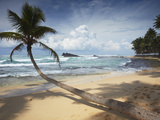 Dalawela Beach, Southern Province, Sri Lanka, Asia Photographic Print by Ian Trower