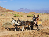 Damara Family, Damaraland, Kunene Region, Namibia, Africa Photographic Print by Nico Tondini