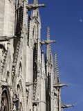 Gargoyles on Notre Dame Cathedral, Paris, France, Europe Photographic Print by  Godong