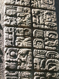 Mayan Stela at Quirigua Archaeological Park, UNESCO World Heritage Site, Guatemala, Central America Photographic Print by Michael DeFreitas