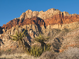 Red Rock Canyon Outside Las Vegas, Nevada, United States of America, North America Reproduction photographique par Michael DeFreitas