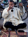 Snake Charmer, Place Jemaa el Fna, Marrakesh, Morocco, North Africa, Africa Photographic Print by Frank Fell
