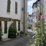 Typical Street Scene with Hollyhocks, St. Martin, Ile de Re, Poitou-Charentes, France, Europe Photographic Print by Stuart Black
