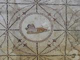 Mosaic of Hypnos, Greek God of Dreams, Risan, Kotor Bay, UNESCO World Heritage Site, Montenegro Fotografisk trykk av Rolf Richardson