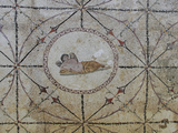 Mosaic of Hypnos, Greek God of Dreams, Risan, Kotor Bay, UNESCO World Heritage Site, Montenegro Photographic Print by Rolf Richardson