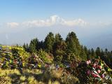 Dhaulagiri Himal, Annapurna Conservation Area, Dhawalagiri (Dhaulagiri), Nepal Photographic Print by Jochen Schlenker