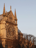 Rose Window on South Facade, Notre Dame Cathedral, Paris, France, Europe Photographic Print by  Godong