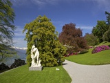 Gardens of Villa Melzi, Bellagio, Lake Como, Lombardy, Italian Lakes, Italy, Europe Photographic Print by Peter Barritt