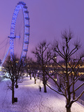 Houses of Parliament and London Eye in Winter, London, England, United Kingdom, Europe Fotografie-Druck von Stuart Black