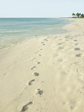 Footprints in Sand at Grace Bay Beach  Providenciales  Turks and Caicos Islands  West Indies