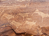 Petroglyphs or Rock Engravings, Twyfelfontein, UNESCO World Heritage Site, Damaraland, Namibia Photographic Print by Nico Tondini