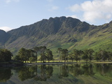 The Lake Buttermere Pines with Haystacks, Lake District National Park, Cumbria, England, UK, Europe Photographic Print by James Emmerson