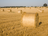 Round Straw Bales in Field, Shottisham, Near Woodbridge, Suffolk, England, United Kingdom, Europe Photographic Print by Ian Murray